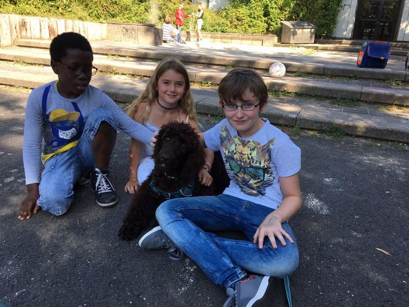 Schulhund – Lukka Lockenwolf